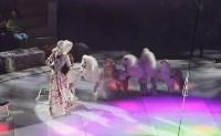 В Тульском цирке состоялось открытие новогодней губернаторской ёлки, Фото: 15