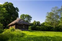 Летний день в Ясной Поляне, Фото: 22