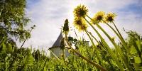 Красный холм, деревня Ивановка, Фото: 1