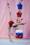 Соревнования по художественной гимнастике 31 марта-1 апреля 2016 года, Фото: 41