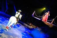 Цирк «Вива, Зорро!» в Туле , Фото: 63