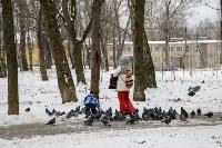 Рогожинский парк, зима 2019, Фото: 8
