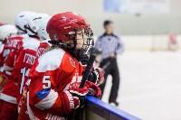 I-й Кубок главы администрации Новомосковска по хоккею., Фото: 43