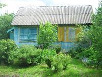 Самые дешевые дачи для аренды в Тульской области, Фото: 2