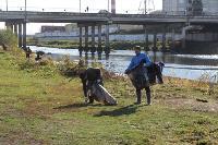 В Туле берега рек очистили от мусора, Фото: 4