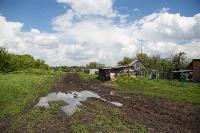 Коровы, свиньи и горы навоза в деревне Кукуй: Роспотреб требует запрета деятельности токсичной фермы, Фото: 22