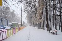 Снежная Тула. 15 ноября 2015, Фото: 15