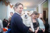 Всероссийская выставка собак 2017, Фото: 1