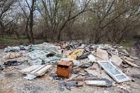 В Туле на берегу Тулицы обнаружен незаконный мусорный полигон, Фото: 34