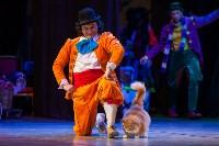 Театр кошек в ГКЗ, Фото: 54