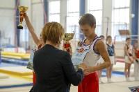 Спортивная гимнастика в Туле 3.12, Фото: 57