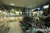 Рыбалка, магазин рыболовных принадлежностей, Фото: 10