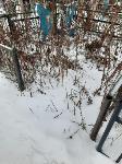 Кто устроил беспредел на кладбище Горняк, Фото: 14