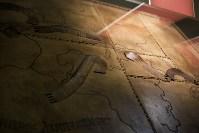 Монтаж экспозиции нового музея на Куликовом поле. Август 2016, Фото: 82