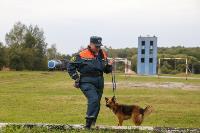 Испытания кинологов в Тульском спасательном центре, Фото: 1