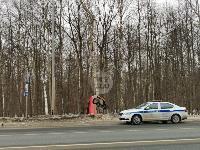 Под Тулой Opel «залез» на дерево, Фото: 8