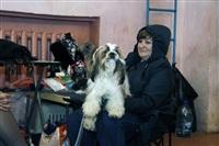 В Туле прошла всероссийская выставка собак, Фото: 4