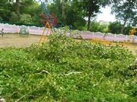 Ураган в Плавске, Фото: 5
