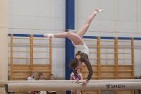 Первенство ЦФО по спортивной гимнастике, Фото: 169