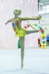 Кубок общества «Авангард» по художественной гимнастики, Фото: 107