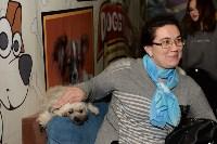 Выставка собак DogLand, Фото: 21