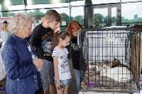 III благотворительный фестиваль помощи животным, Фото: 15