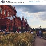 Цветочный джем: Тульское поле в Москве, Фото: 25