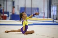 Спортивная гимнастика в Туле 3.12, Фото: 118