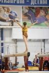Спортивная гимнастика в Туле 3.12, Фото: 170