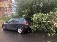 Дерево упало на авто, Фото: 7