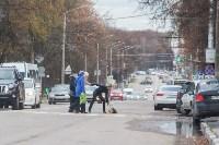 Рейд ГИБДД по пешеходам, Фото: 2