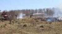 Лесной пожар: учения МЧС, Фото: 1
