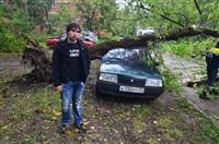 На автомобиль упало дерево, Фото: 10