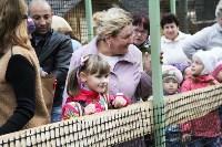 В Новомосковске открылся мини-зоопарк, Фото: 13