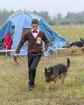 Международная выставка собак, Барсучок. 5.09.2015, Фото: 61