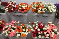 Выбираем подарки ко Дню святого Валентина,  23 февраля и 8 марта, Фото: 8