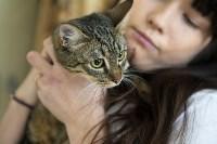 Юлия Пялова и ее животные, Фото: 24