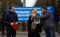 """Митинг против закона """"о шлепкАх"""", Фото: 12"""