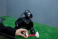 Планета роботов, Фото: 50