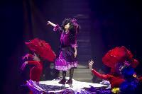 Шоу фонтанов «13 месяцев» в Тульском цирке – подарите себе и близким путевку в сказку!, Фото: 85