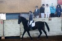Открытый любительский турнир по конному спорту., Фото: 23