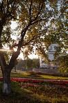Золотая осень в Тульской области, Фото: 49