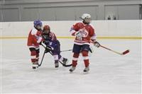 Международный детский хоккейный турнир. 15 мая 2014, Фото: 73