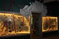 Открытие Краеведческого музея. 20 декабря 2013, Фото: 10