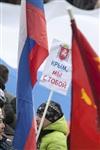 В Туле проходит митинг в поддержку Крыма, Фото: 26