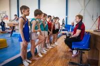 Мужская спортивная гимнастика в Туле, Фото: 26