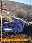 В Тульской области найдены останки двух солдат Вермахта, Фото: 2