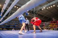 Гран-при Тулы по боксу-2017, Фото: 67