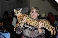 В Туле прошла международная выставка кошек, Фото: 52