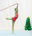 Кубок общества «Авангард» по художественной гимнастики, Фото: 26